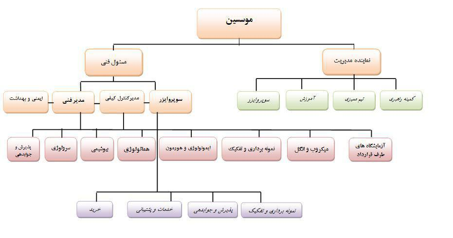 chart-sazmani